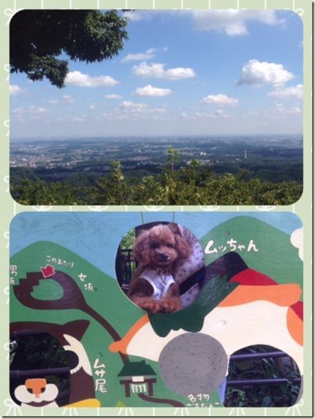 091915 高尾山 登り