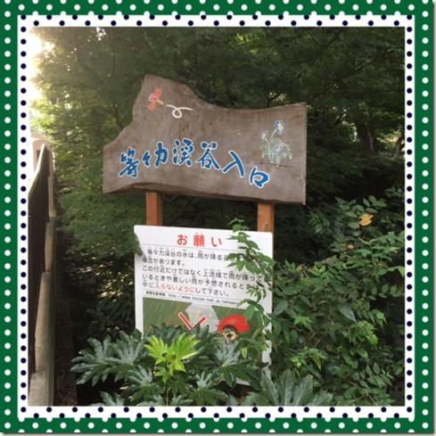 081016 Todoroki Valley1