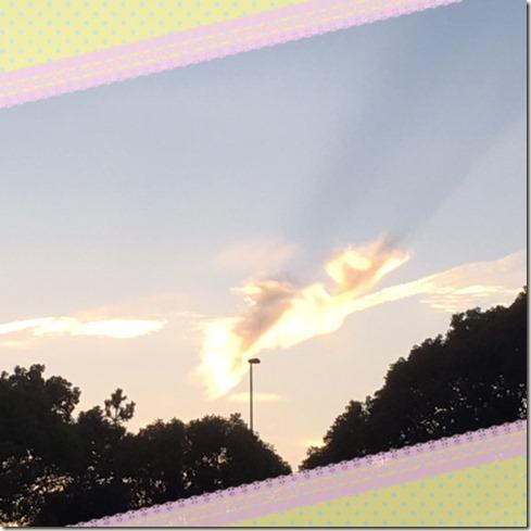 082616  the shape of cloud looks like a bird