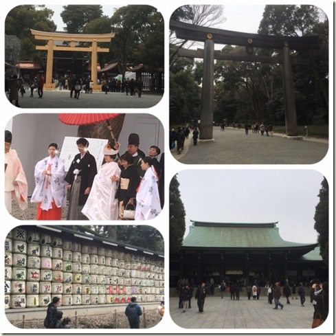 020517 meiji shrine