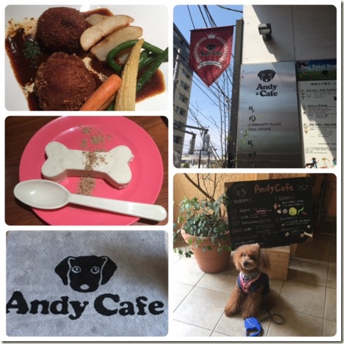 041517 ANDY CAFE