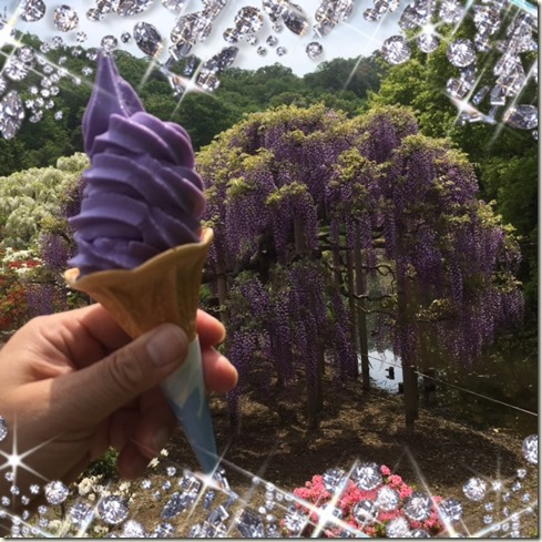 050317 Ice-cream cone of the taste of wisteria