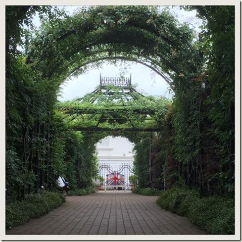 061117 Yokohama English Garden