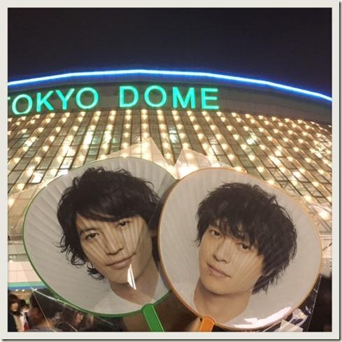 081317 dome